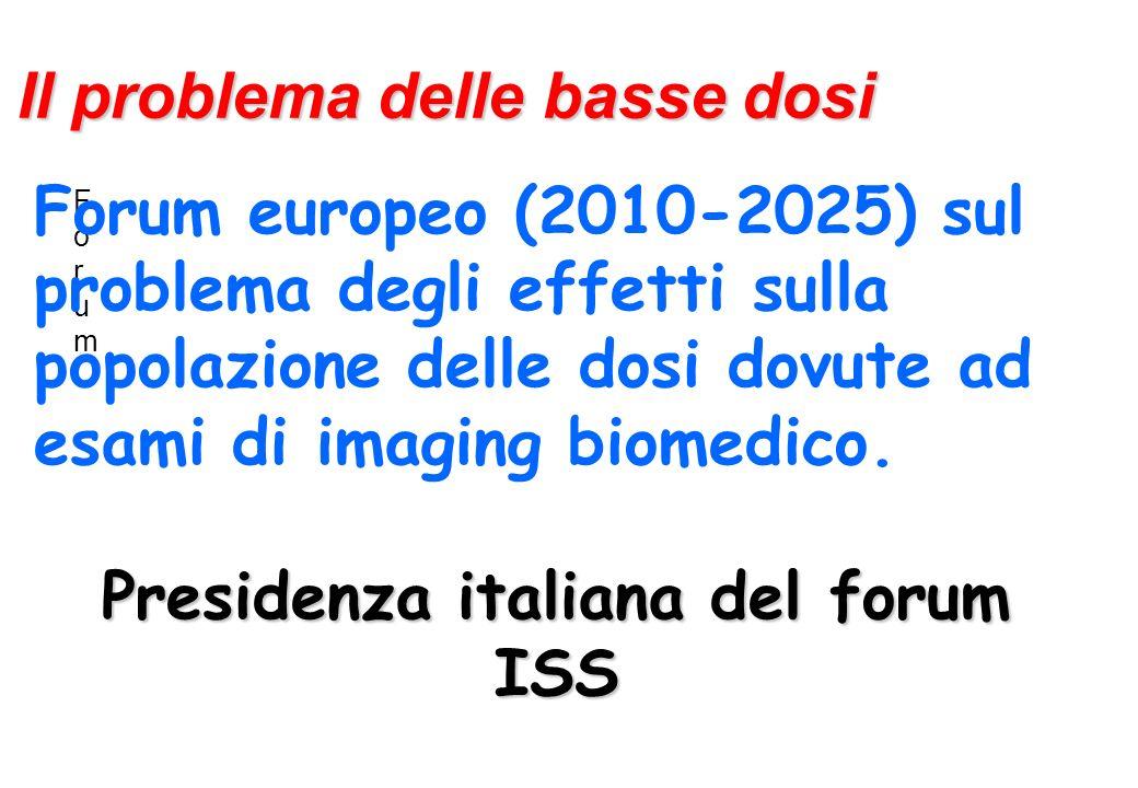 Presidenza italiana del forum ISS
