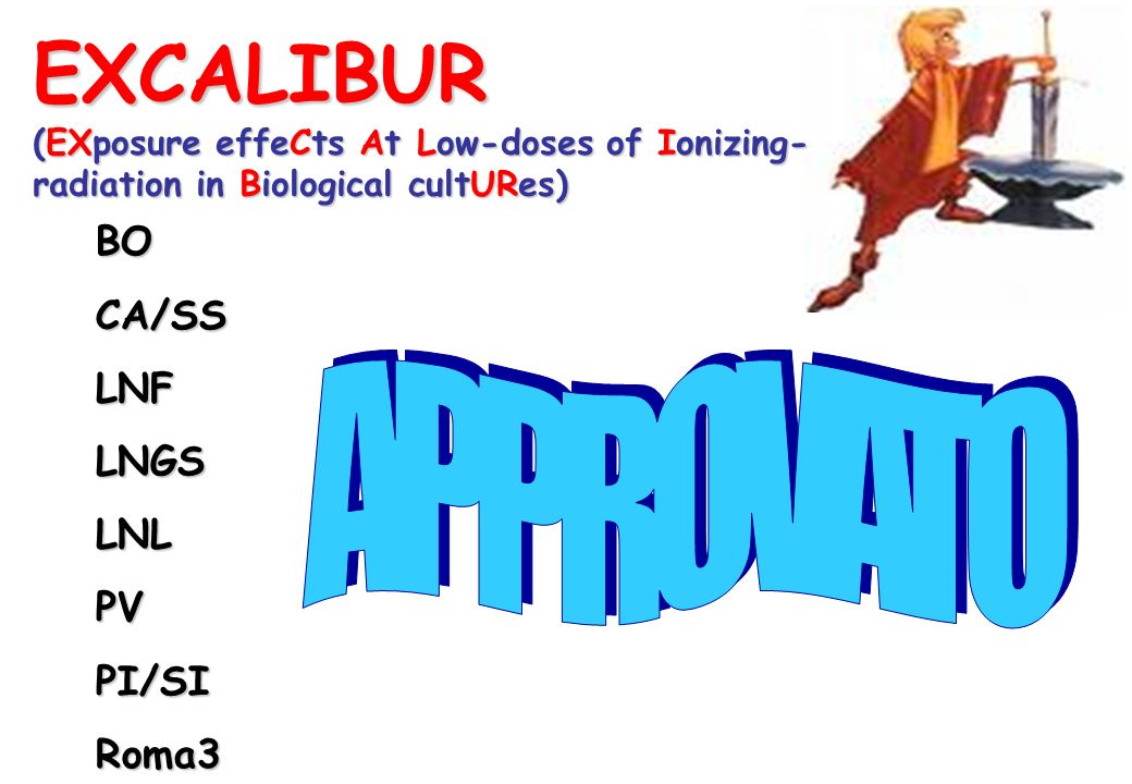 EXCALIBUR APPROVATO BO CA/SS LNF LNGS LNL PV PI/SI Roma3