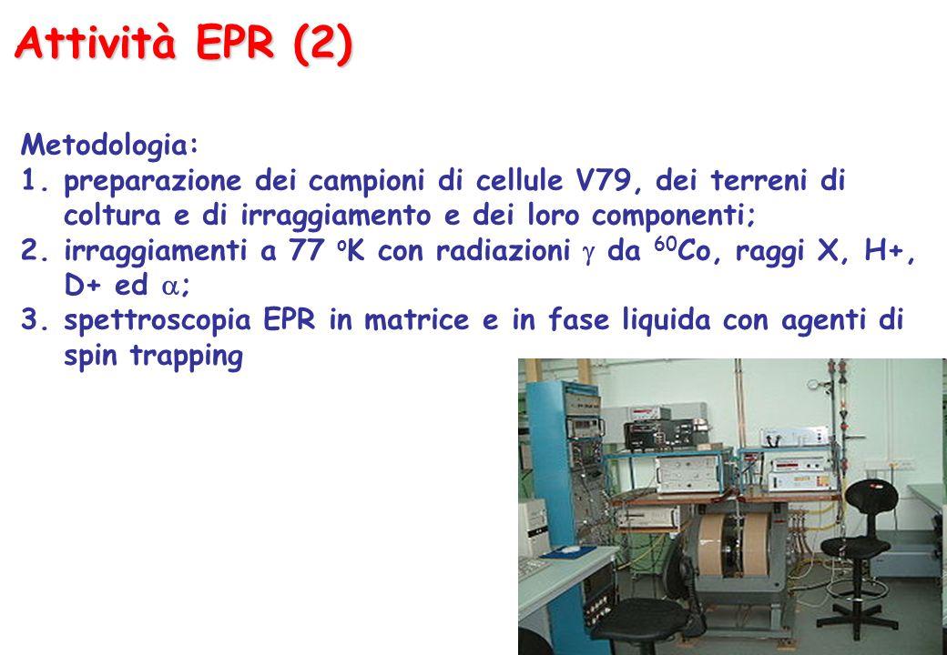 Attività EPR (2) Metodologia: