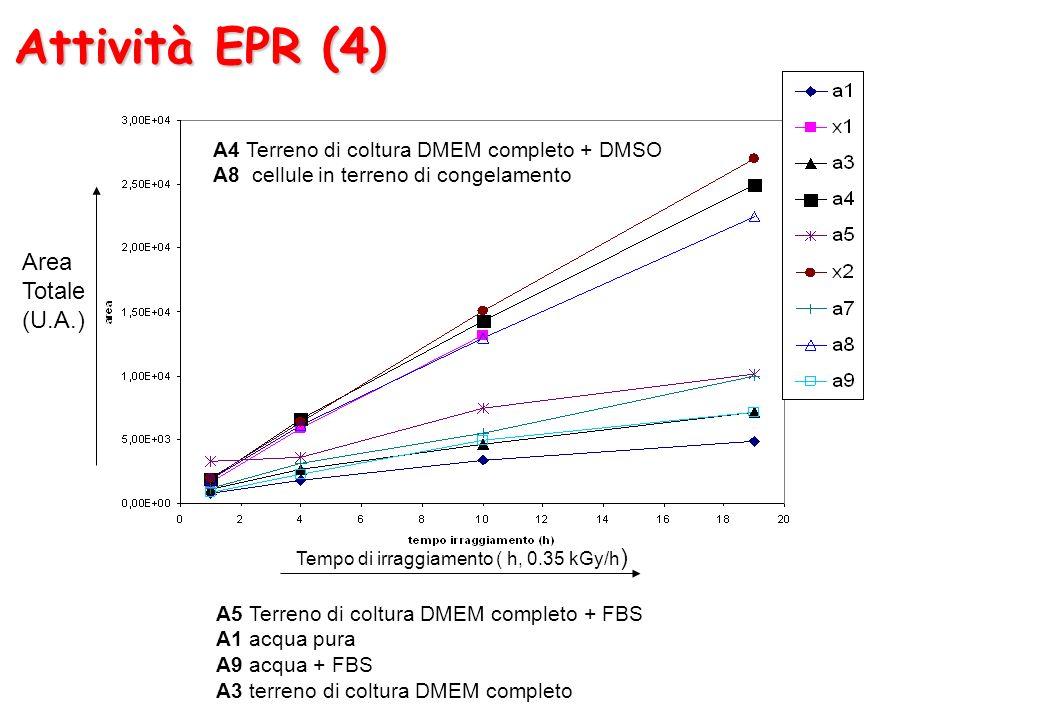 Attività EPR (4) Area Totale (U.A.)