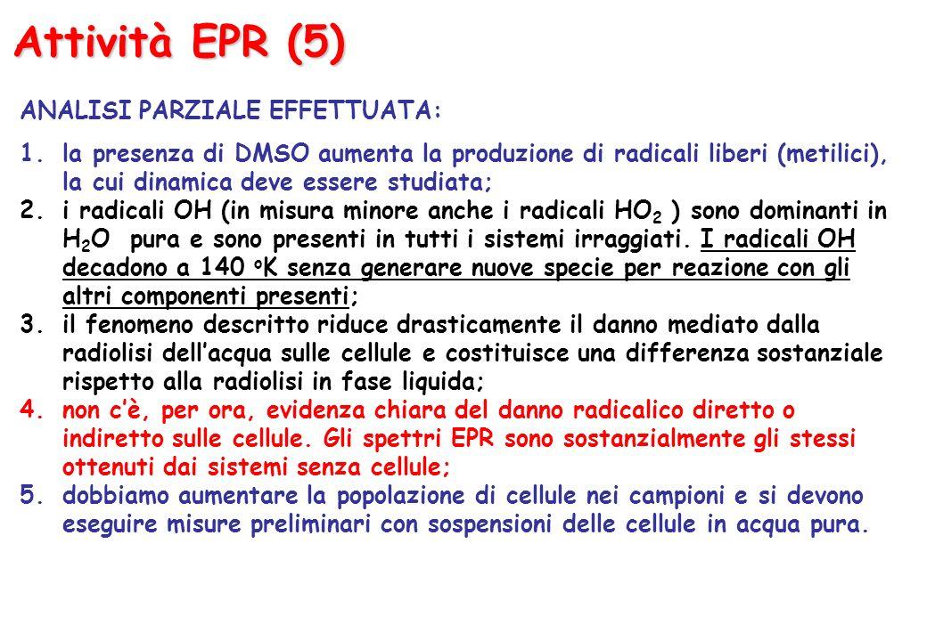 Attività EPR (5) ANALISI PARZIALE EFFETTUATA: