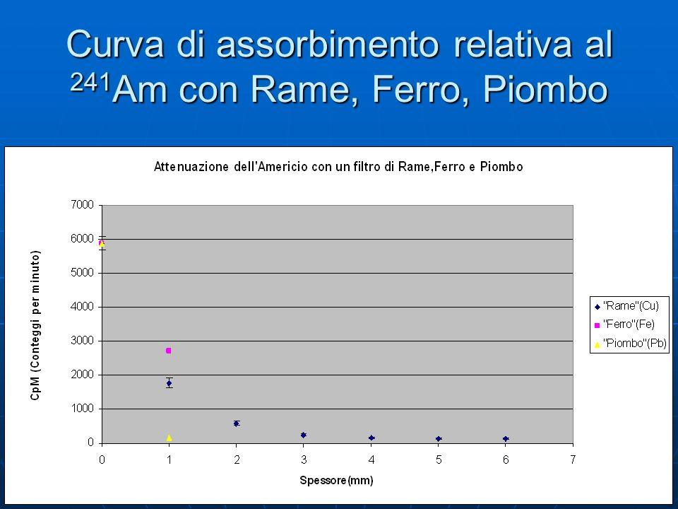 Curva di assorbimento relativa al 241Am con Rame, Ferro, Piombo