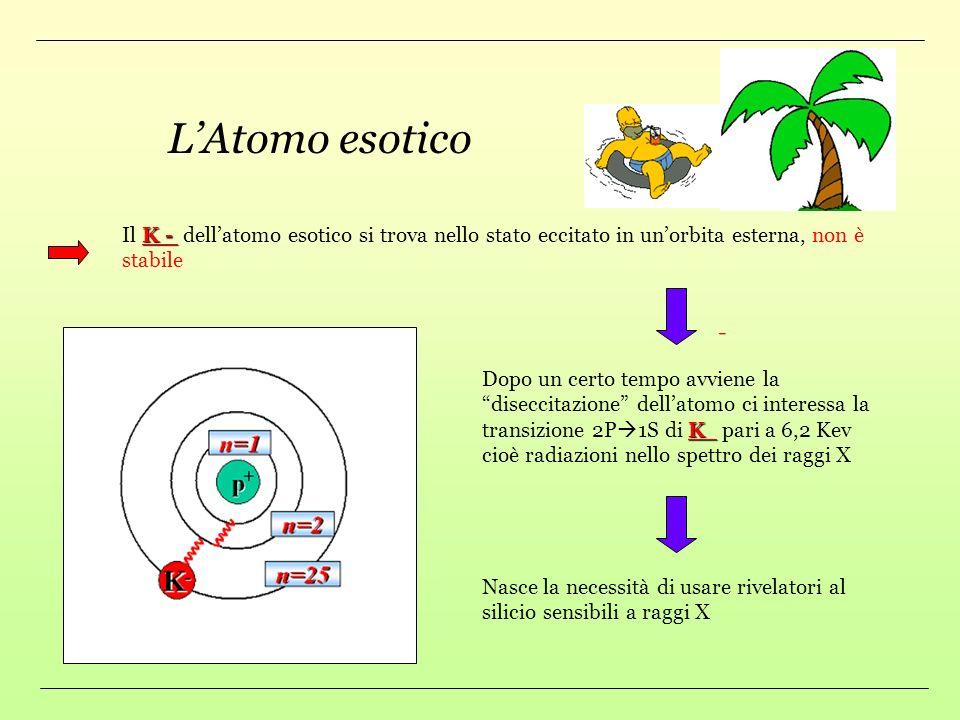 L'Atomo esotico Il K - dell'atomo esotico si trova nello stato eccitato in un'orbita esterna, non è stabile.