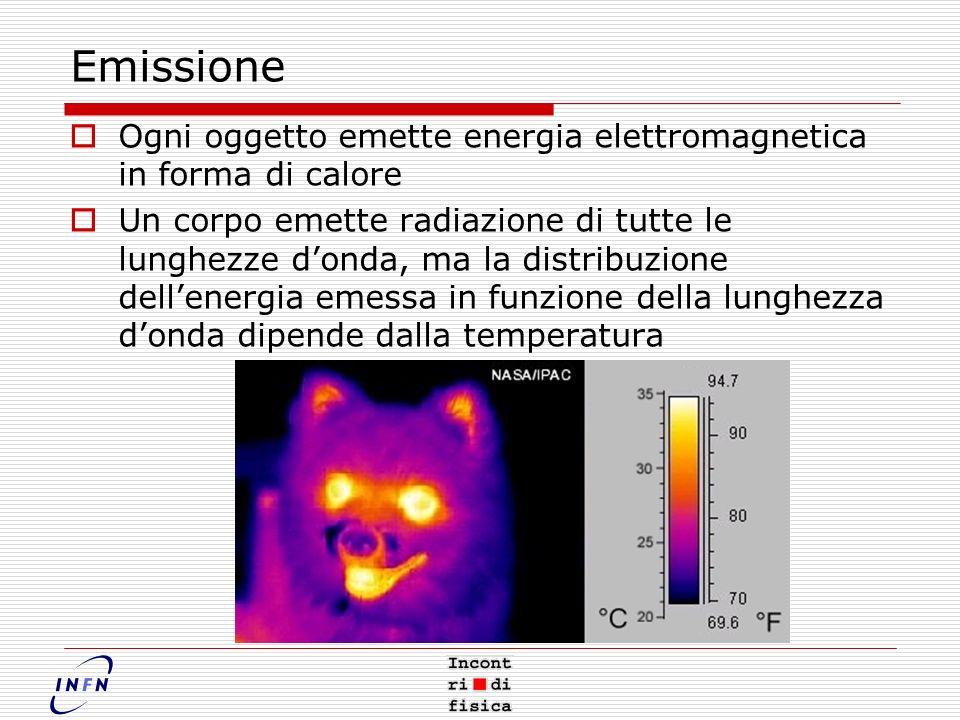 Emissione Ogni oggetto emette energia elettromagnetica in forma di calore.