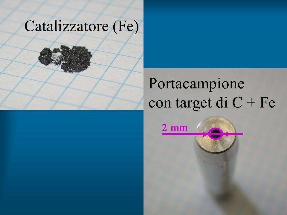 Catalizzatore (Fe) Portacampione con target di C + Fe