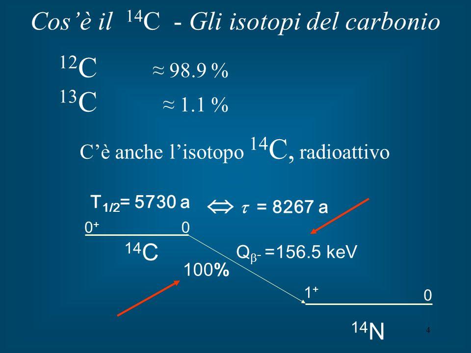 Cos'è il 14C - Gli isotopi del carbonio