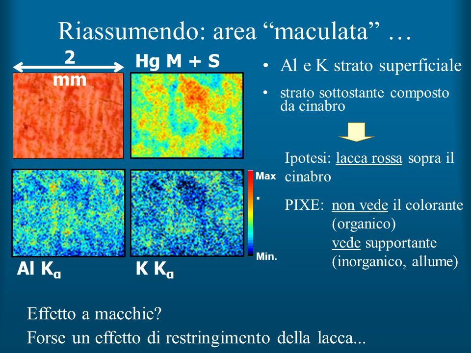 Riassumendo: area maculata …
