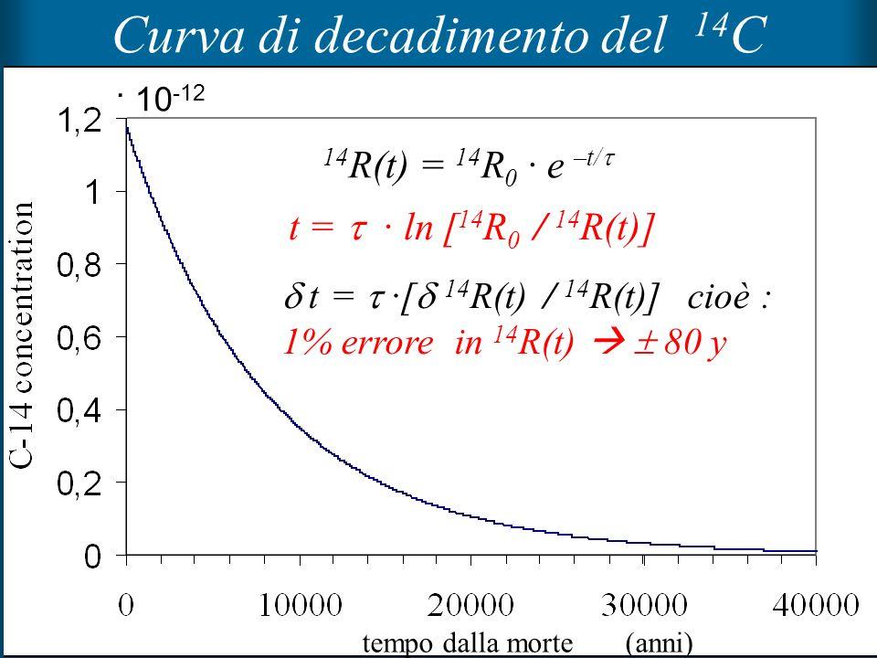 Curva di decadimento del 14C