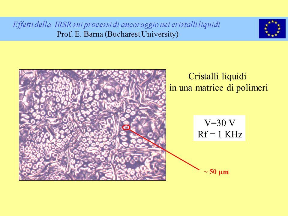 in una matrice di polimeri
