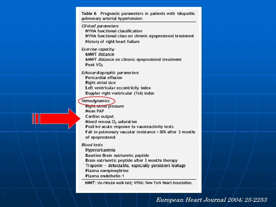 European Heart Journal 2004; 25:2253