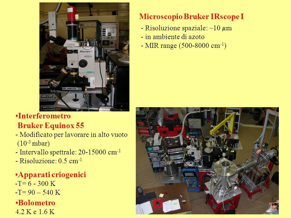 Microscopio Bruker IRscope I