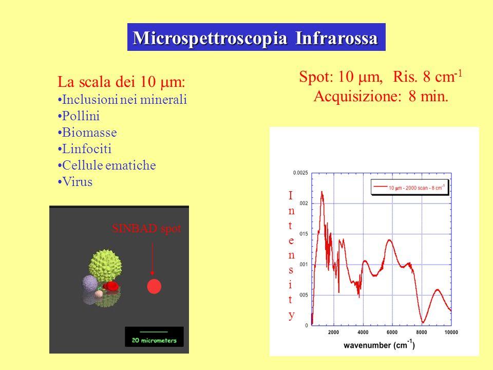 Microspettroscopia Infrarossa