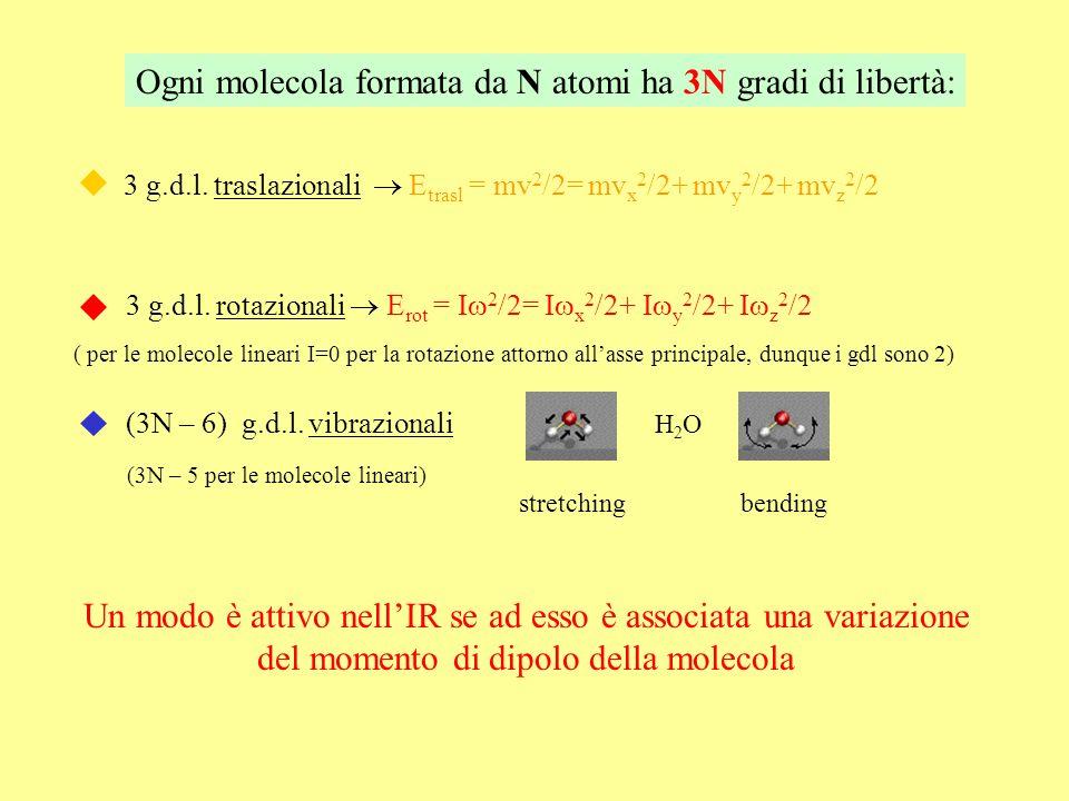Ogni molecola formata da N atomi ha 3N gradi di libertà:
