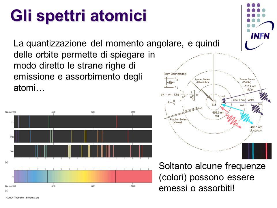 Gli spettri atomici La quantizzazione del momento angolare, e quindi delle orbite permette di spiegare in.