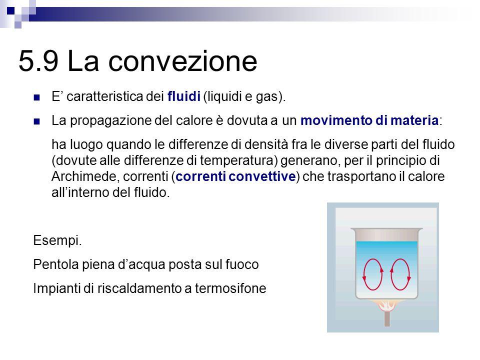 5.9 La convezione E' caratteristica dei fluidi (liquidi e gas).