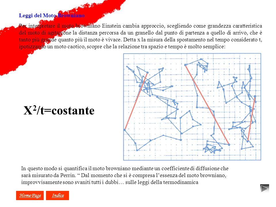 X2/t=costante X X X Leggi del Moto Browniano
