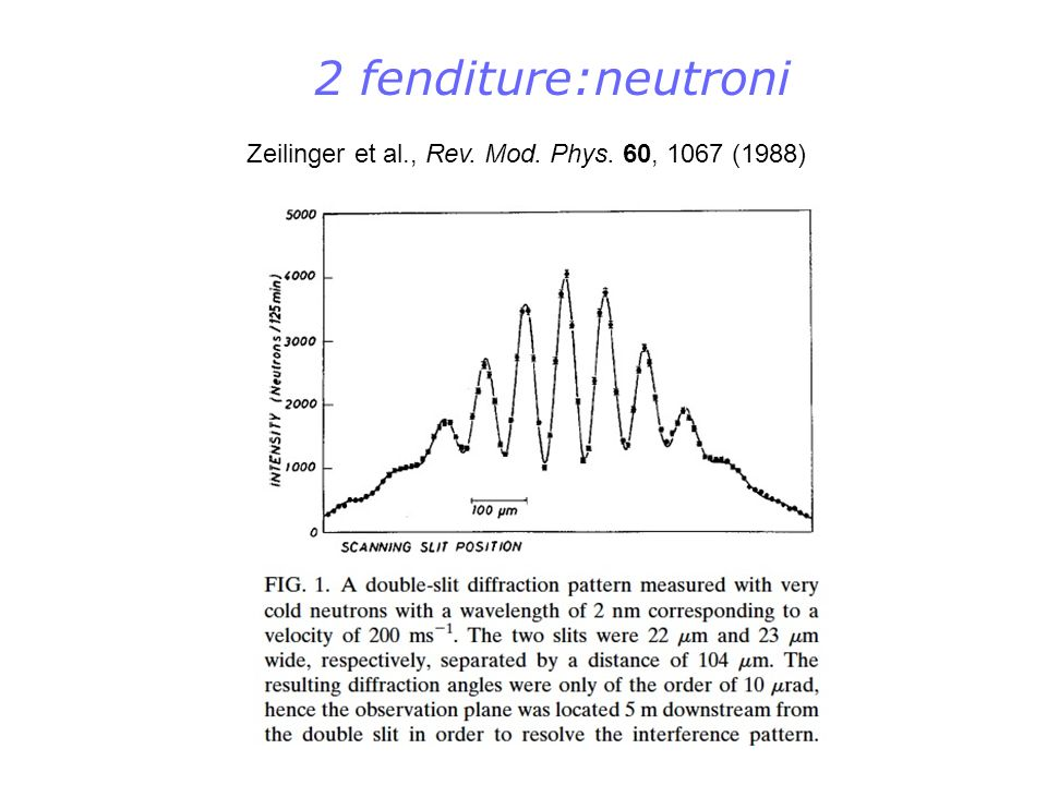 2 fenditure:neutroni Zeilinger et al., Rev. Mod. Phys. 60, 1067 (1988)