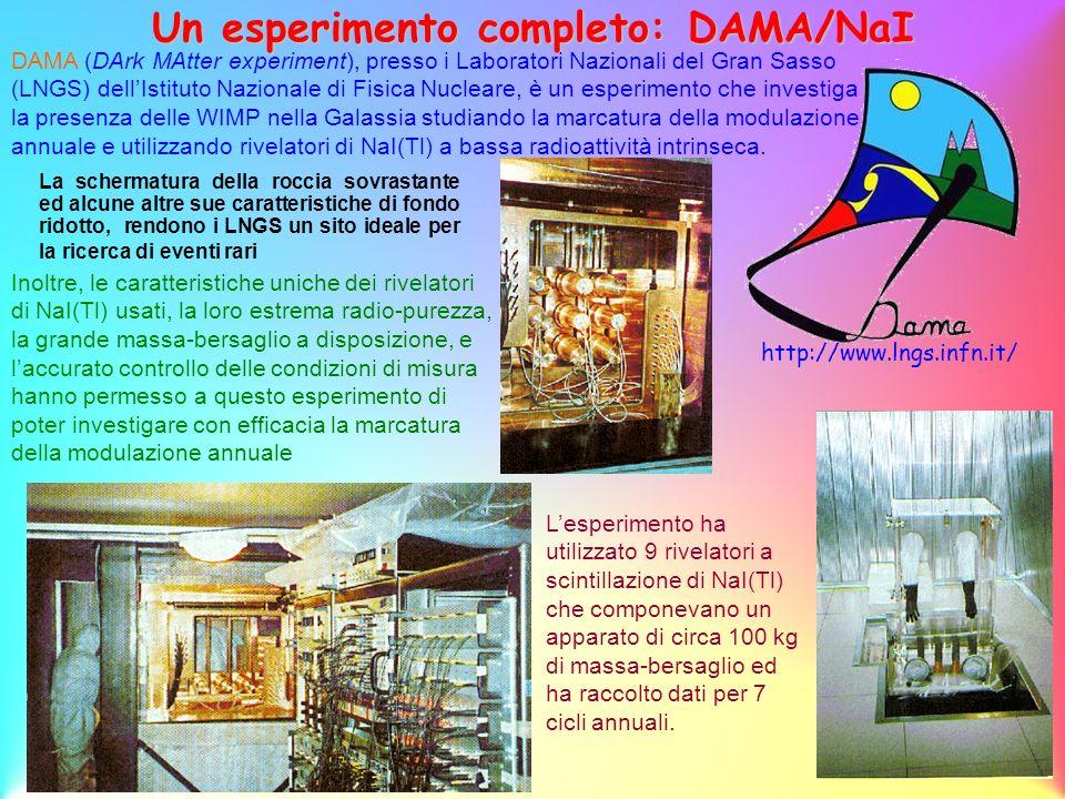 Un esperimento completo: DAMA/NaI