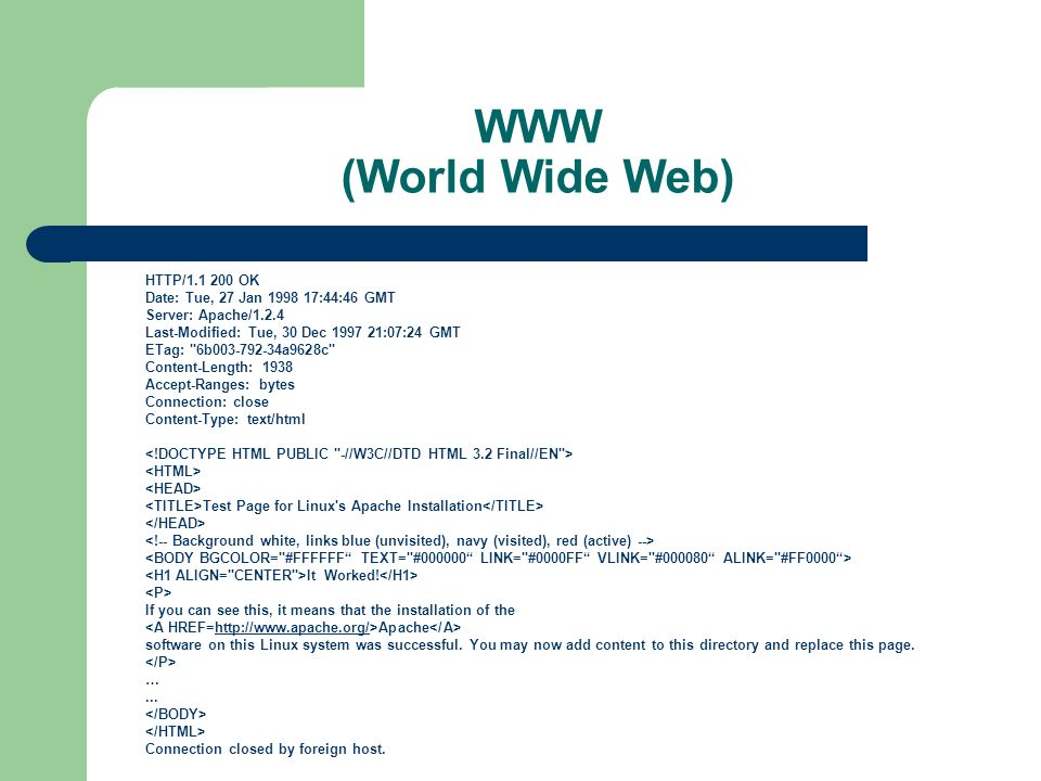 WWW (World Wide Web) HTTP/1.1 200 OK