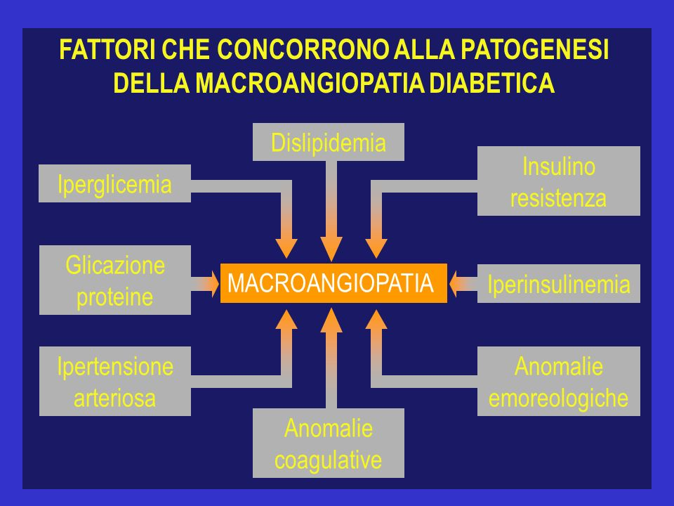 FATTORI CHE CONCORRONO ALLA PATOGENESI DELLA MACROANGIOPATIA DIABETICA