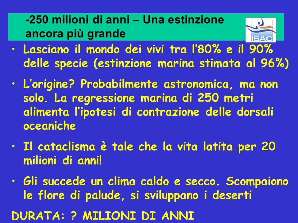 -250 milioni di anni – Una estinzione ancora più grande