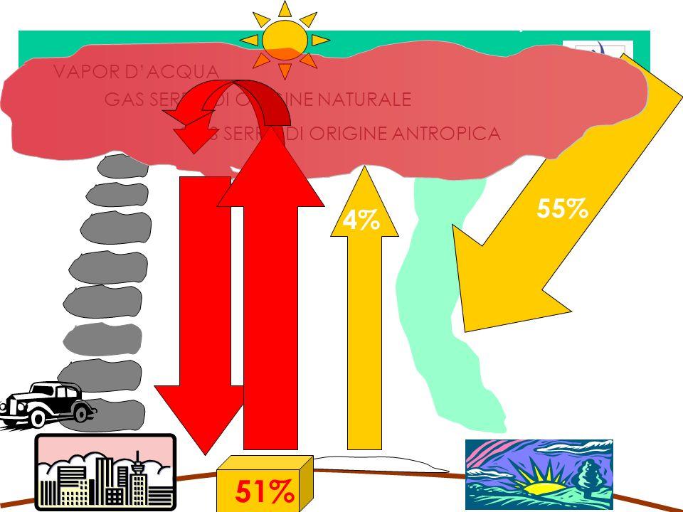 51% 51% 55% 4% 100% = 1327 watts/m2 VAPOR D'ACQUA