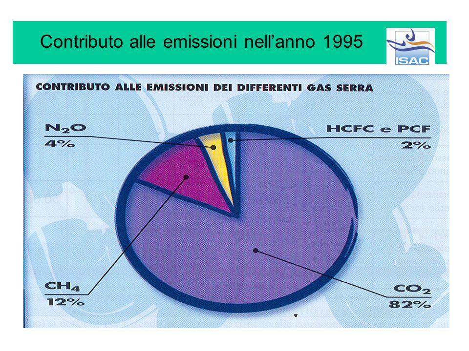Contributo alle emissioni nell'anno 1995