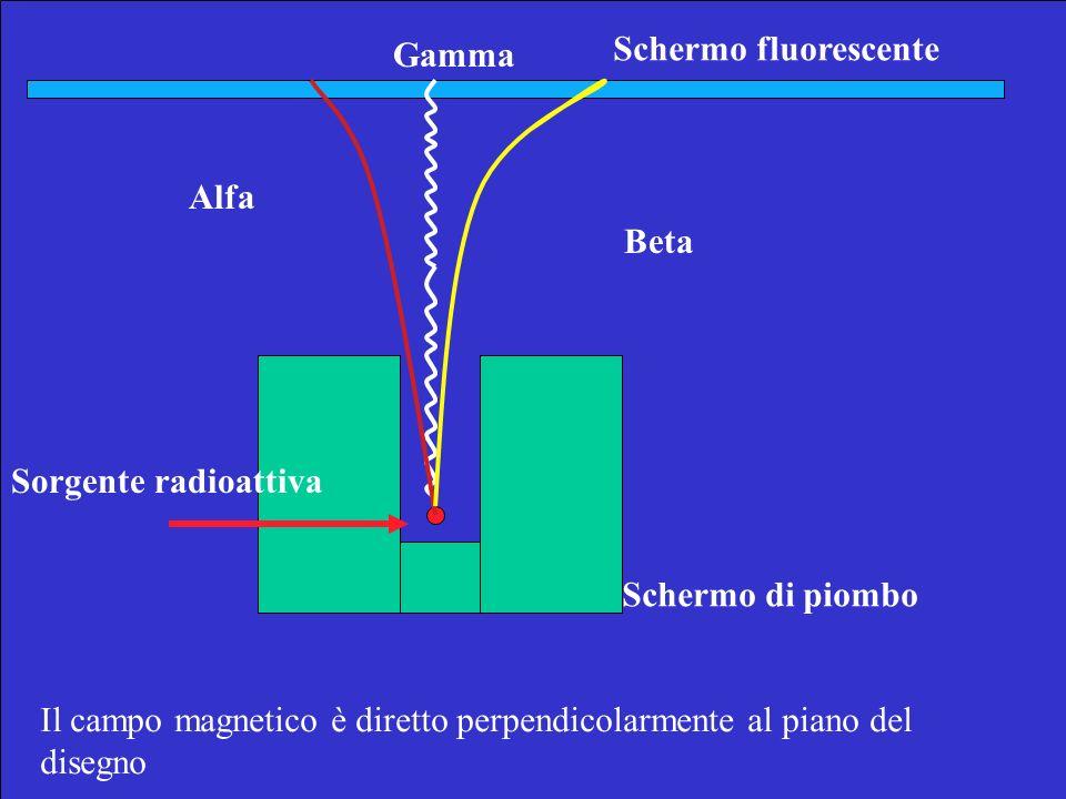Gamma Schermo fluorescente. Alfa. Beta. Sorgente radioattiva. Schermo di piombo.