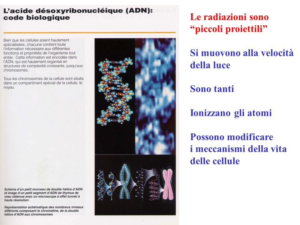 Le radiazioni sono piccoli proiettili Si muovono alla velocità. della luce. Sono tanti. Ionizzano gli atomi.
