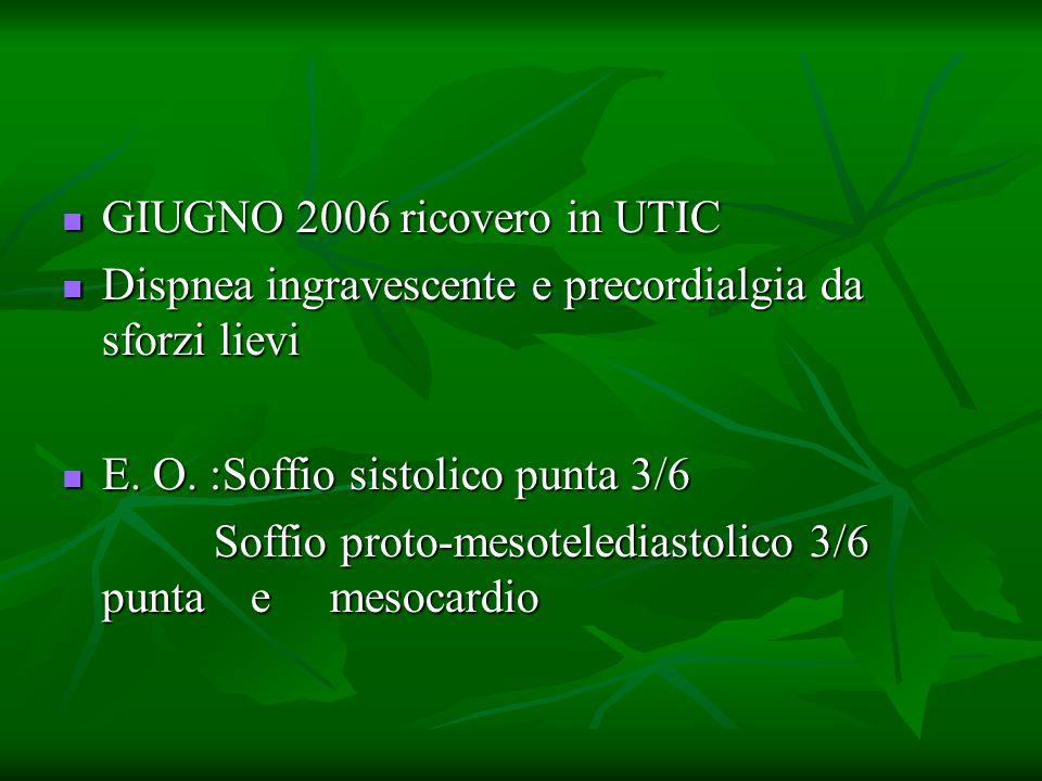 GIUGNO 2006 ricovero in UTIC