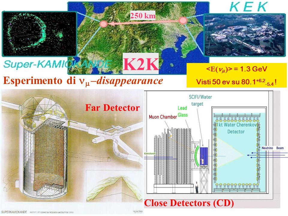 K2K Esperimento di nm –disappearance Far Detector Close Detectors (CD)