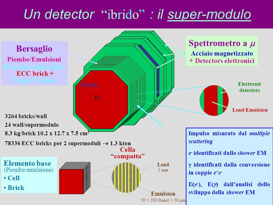 Un detector ibrido : il super-modulo