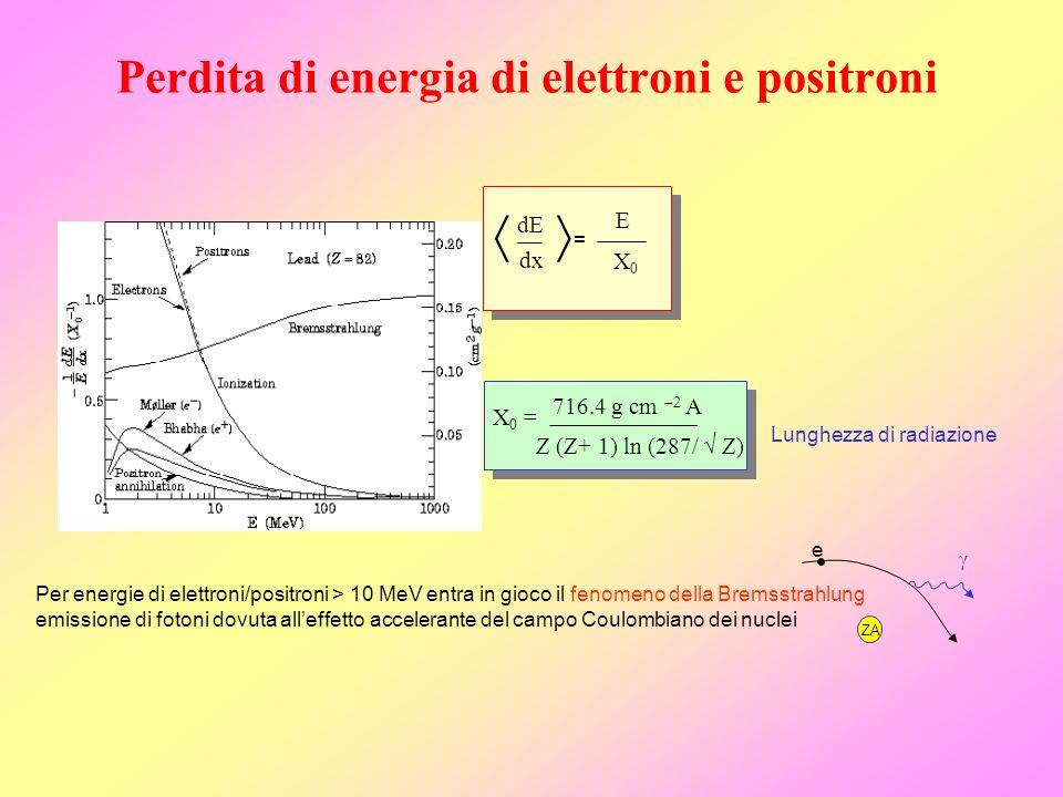 Perdita di energia di elettroni e positroni