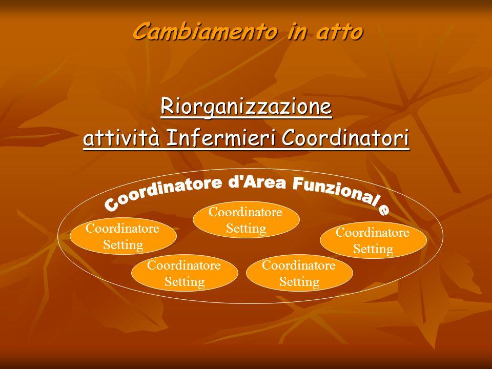 Coordinatore d Area Funzionale