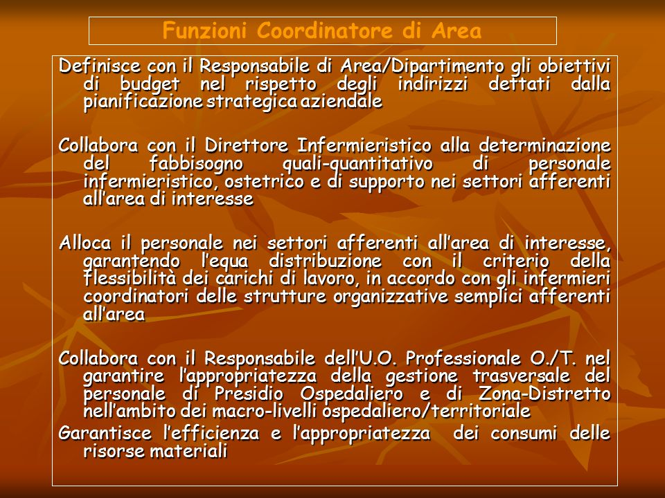 Funzioni Coordinatore di Area