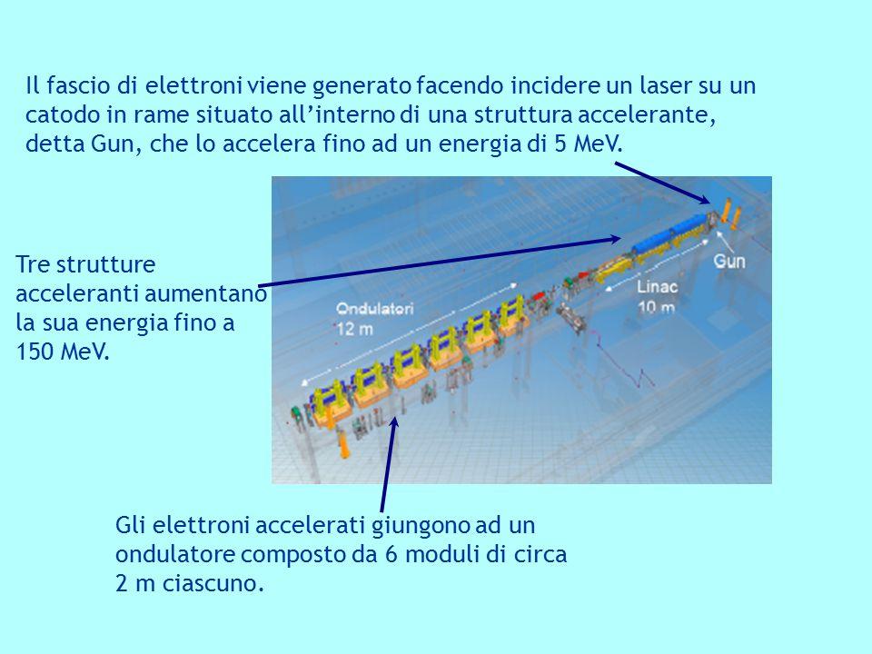 Il fascio di elettroni viene generato facendo incidere un laser su un catodo in rame situato all'interno di una struttura accelerante, detta Gun, che lo accelera fino ad un energia di 5 MeV.