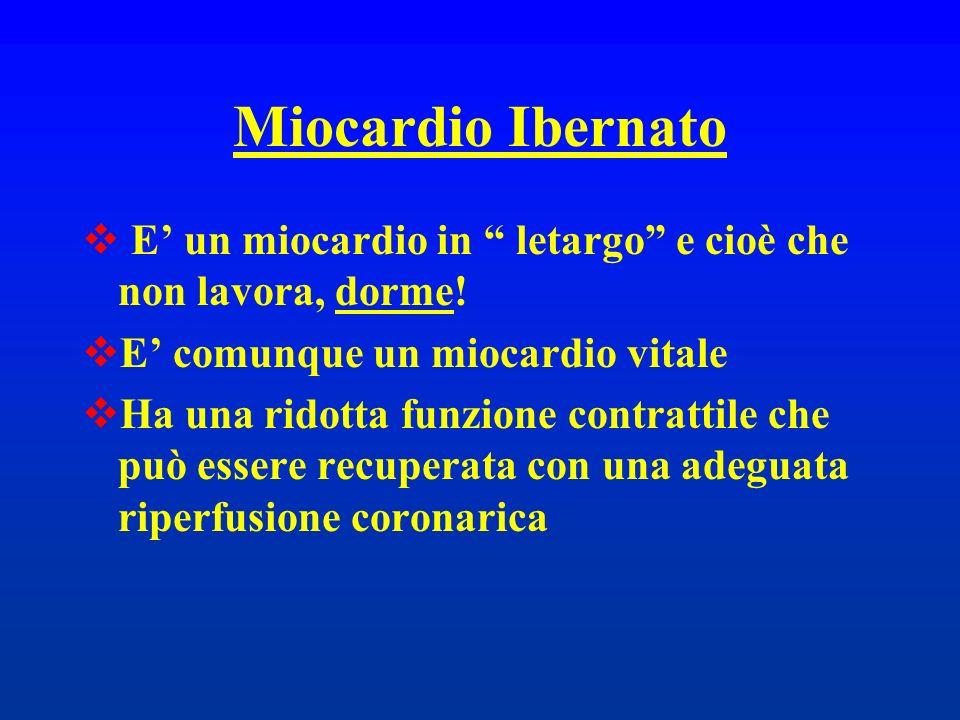 Miocardio Ibernato E' un miocardio in letargo e cioè che non lavora, dorme! E' comunque un miocardio vitale.