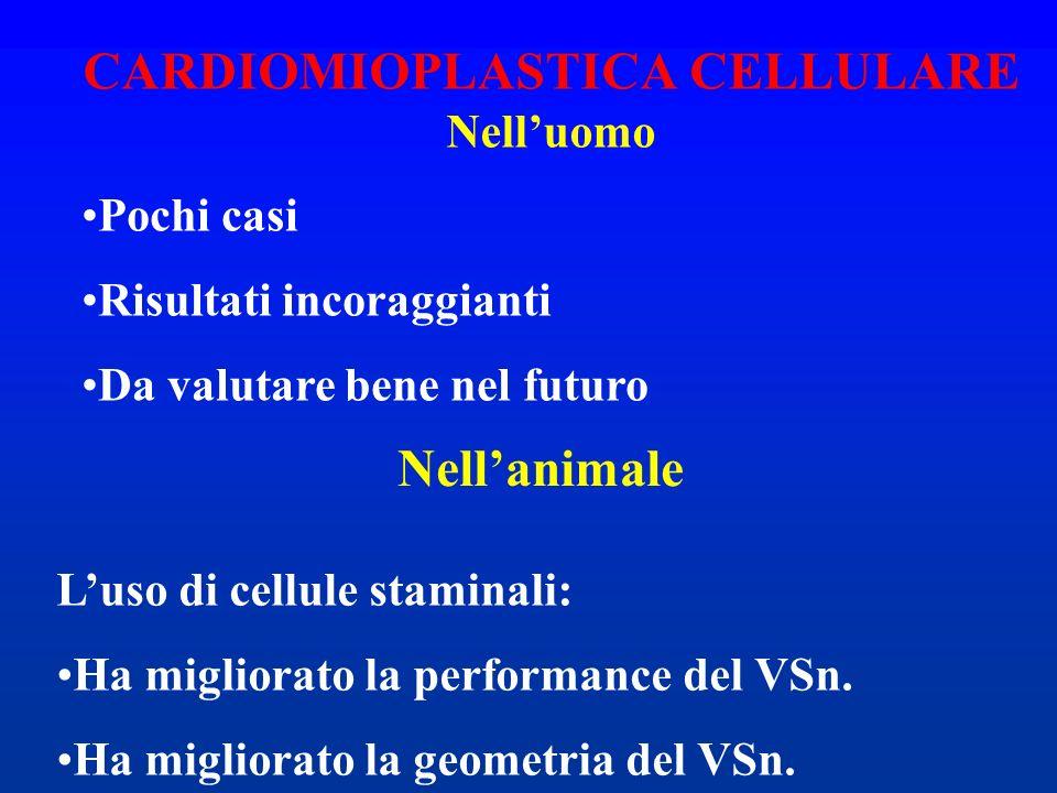 CARDIOMIOPLASTICA CELLULARE Nell'uomo