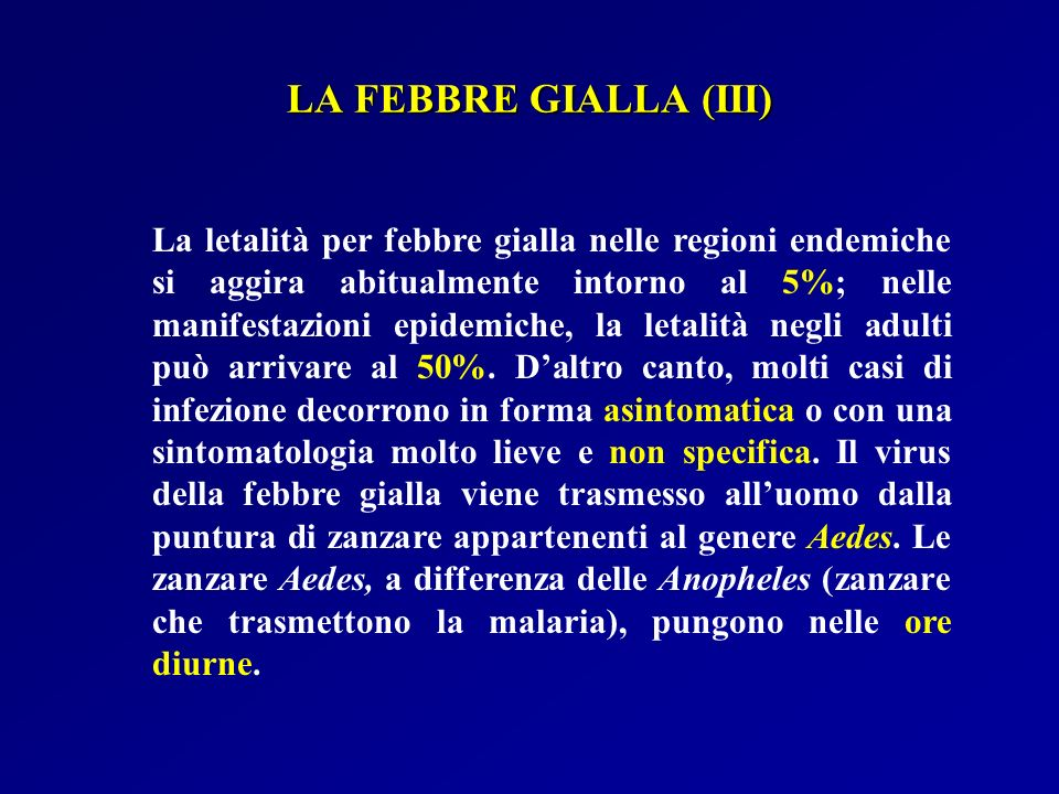 LA FEBBRE GIALLA (III)