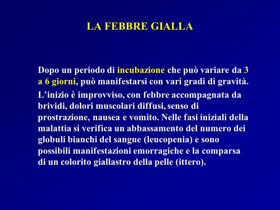 LA FEBBRE GIALLA Dopo un periodo di incubazione che può variare da 3 a 6 giorni, può manifestarsi con vari gradi di gravità.
