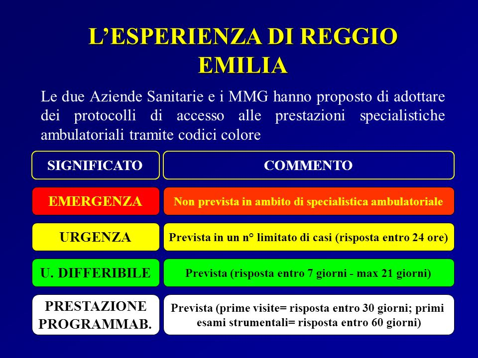 L'ESPERIENZA DI REGGIO EMILIA