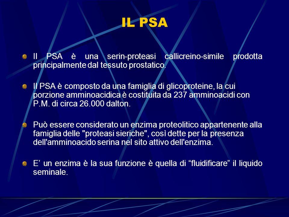 IL PSAIl PSA è una serin-proteasi callicreino-simile prodotta principalmente dal tessuto prostatico.