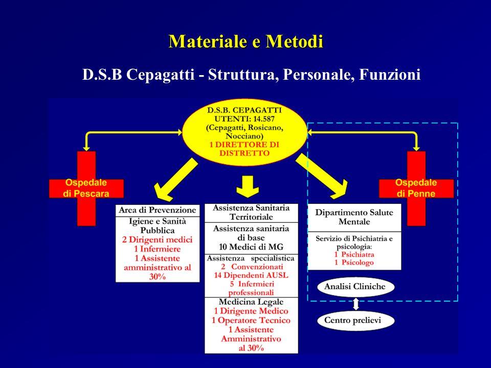 D.S.B Cepagatti - Struttura, Personale, Funzioni