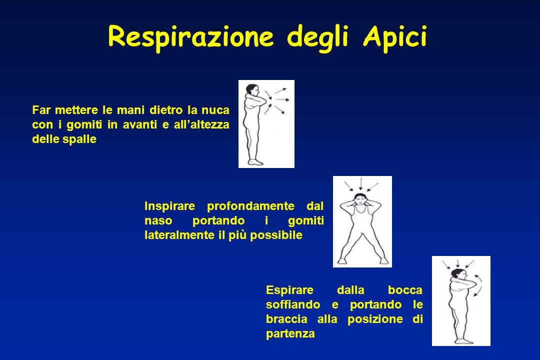 Respirazione degli Apici