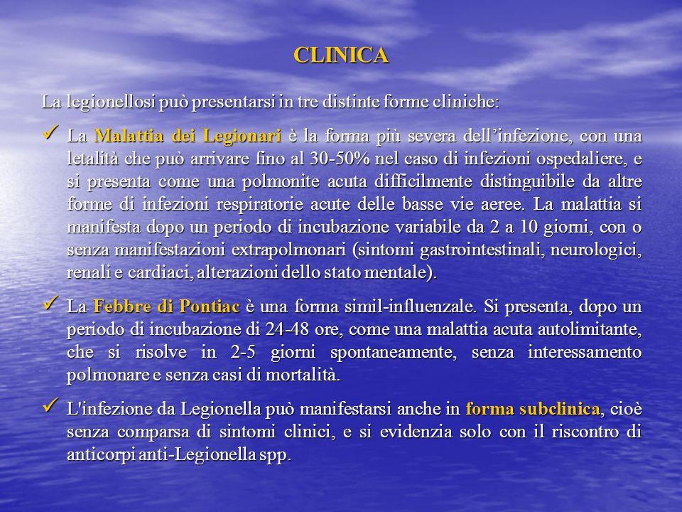 CLINICA La legionellosi può presentarsi in tre distinte forme cliniche: