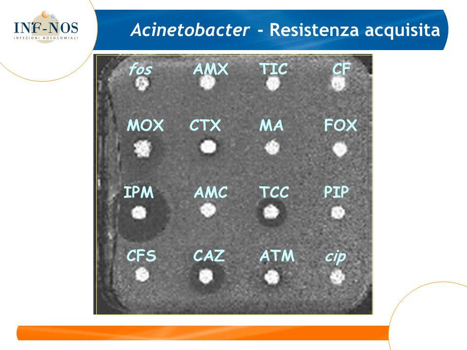 Acinetobacter - Resistenza acquisita