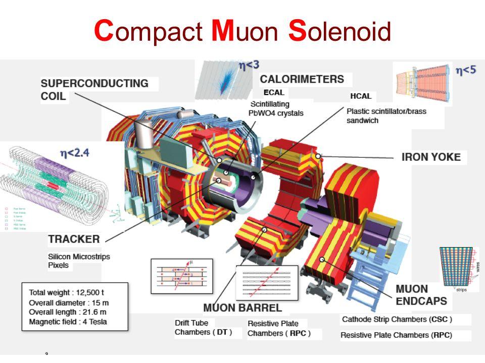 Compact Muon Solenoid