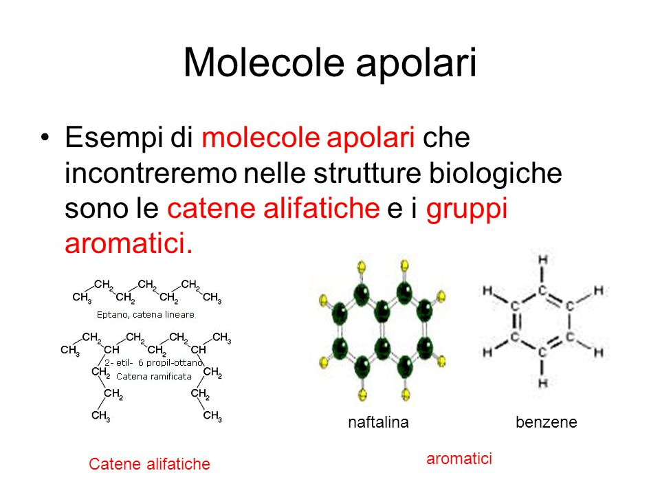 Molecole apolari Esempi di molecole apolari che incontreremo nelle strutture biologiche sono le catene alifatiche e i gruppi aromatici.