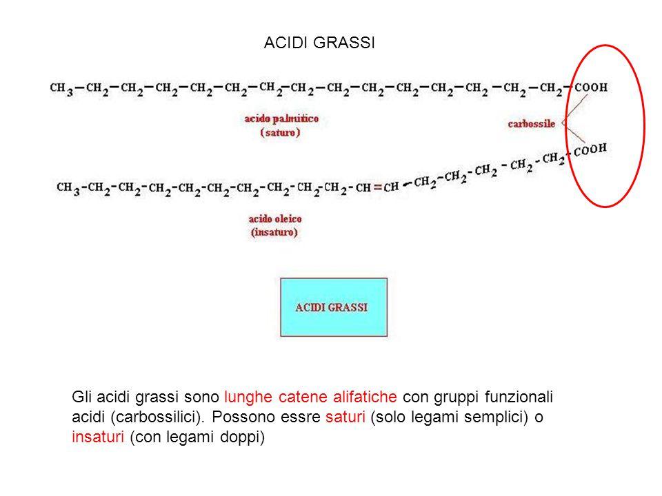 ACIDI GRASSI carbossile.