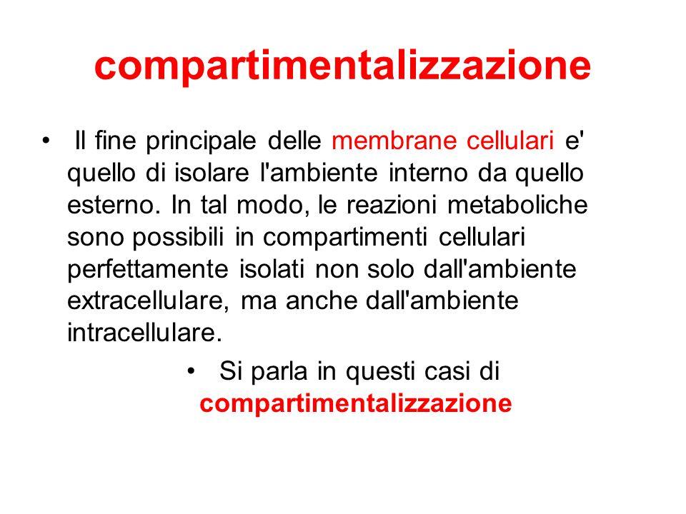 compartimentalizzazione
